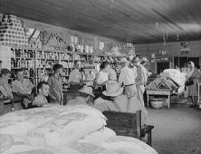 escambia-farms-coop-store-1942