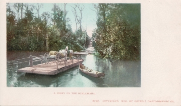 Ferry on the Ocklawaha