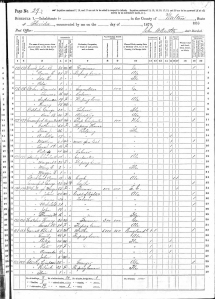 1870 Walton County census, pg 29