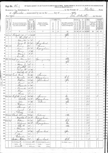 1870 Walton County census, pg 36