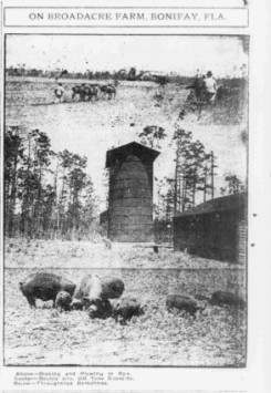 Holmes Co farm