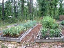 Garden20095