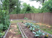 Garden20096