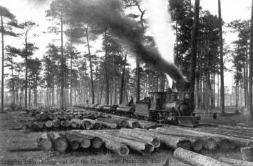 Logging Train at Work - Pensacola, Florida, 190-?